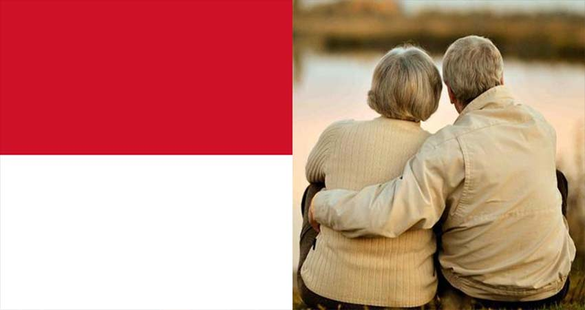 Healthy Life Expectancy in Indonesia